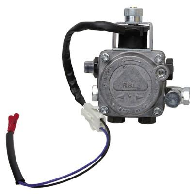pump BINOMIO - RIELLO : 3002543