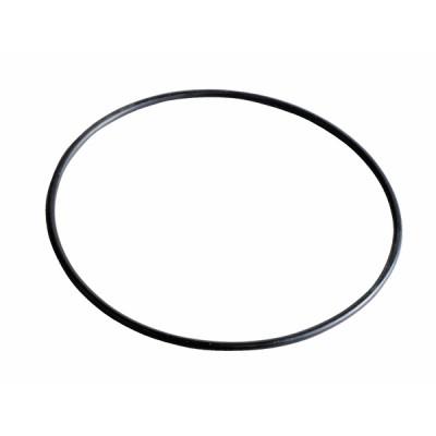 O-ring Ø7000x200 - EBARA : 360927000