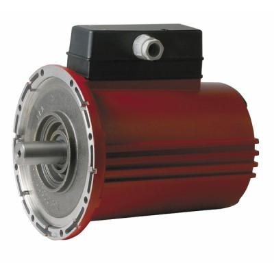 Blocco motore Ra2500-2 - SALMSON : 4005661