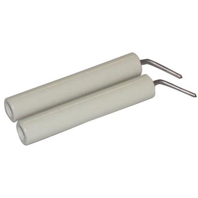 Électrode porcelaine (X 2)