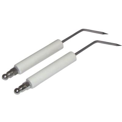 Électrode spécifique A6G (X 2) - ZAEGEL HELD : Z229200899