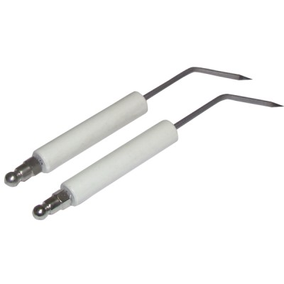 Specific electrode a6g  (X 2) - ZAEGEL HELD : Z229200899