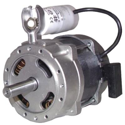 Brennermotor Typ 60 .2.50M  - GAZ INDUSTRIE: 1027011