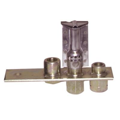 Zündbrenner und Düse POLIDORO FERROLI Typ 630S  - FERROLI: 39801510