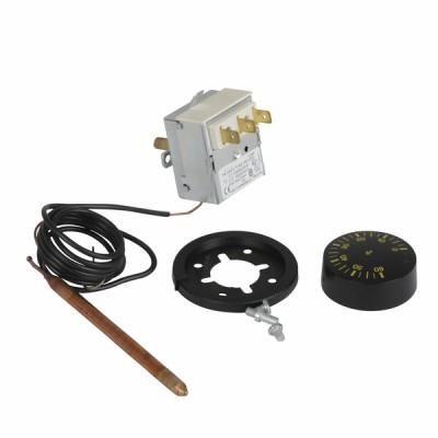 Termostato regolazione acqua a bulbo TR 2 0-60° - NESTOR MARTIN : 40814