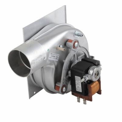 Extracteur de fumées - DIFF pour Biasi : BI1016108