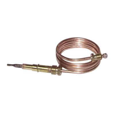 spezifisches Thermoelement - FERROLI 36700980