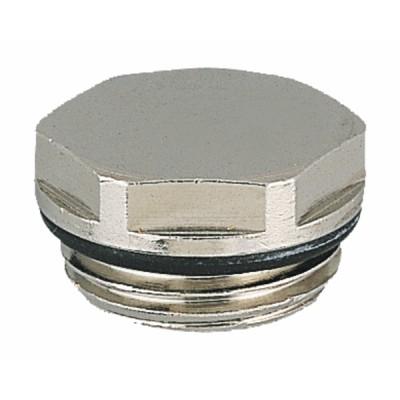 Radiator full cap in 1/2 - DIFF