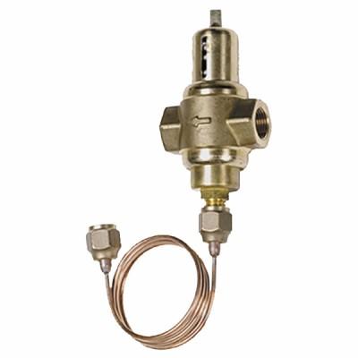 Vanne pressostatique faible débit Kv 0,5 taraudé - JOHNSON CONTR.E : V46SA-9110