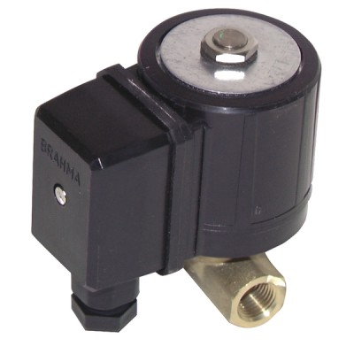 "Solenoid valve type brahma e 6g s8 ff1/4"" - BRAHMA : 13752003"