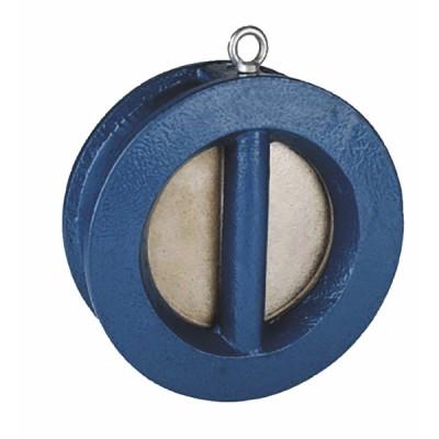 Válvula de retención de doble placa de hierro 100 - SFERACO : 370100
