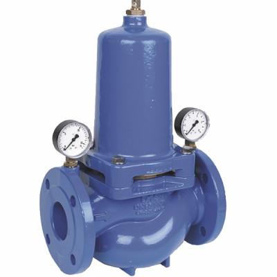 Flanged pressure regulator dn65 - HONEYWELL : D15S65A