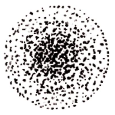 Steinen Düse S/ST 0,40 GPH 45°  - STEINEN: 040D45SOU