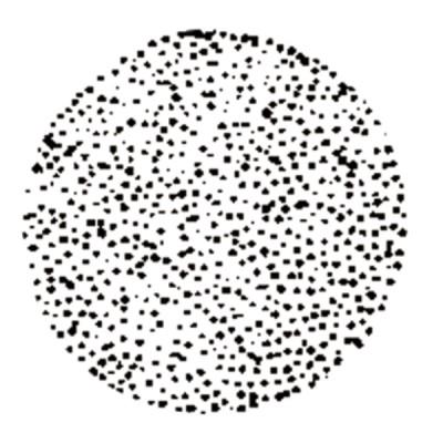 Gicleur STEINEN 0,50G 45° Q ou QT - STEINEN : 050D45QOUQT