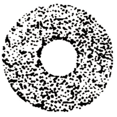Gicleur STEINEN 4,50G 45° SS - STEINEN : 450D45SS