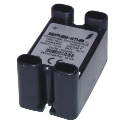 Zündtransformator TSC1 ersetzt CAST 697 202 98   - DIFF