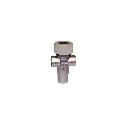 Mezclador termostático Racor 1/2 H