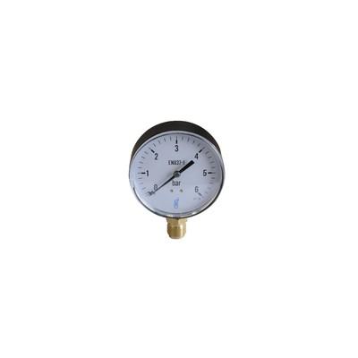 Water & air pressure gauge 0/6 bar ø100mm