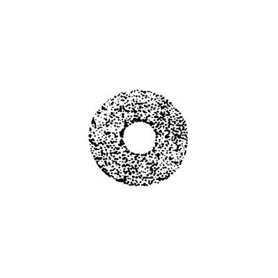 Steinen Düse SS 4,50 GPH 45°