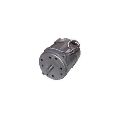 Motore bruciatore 150W p/15M/20M - RIELLO : 3005820