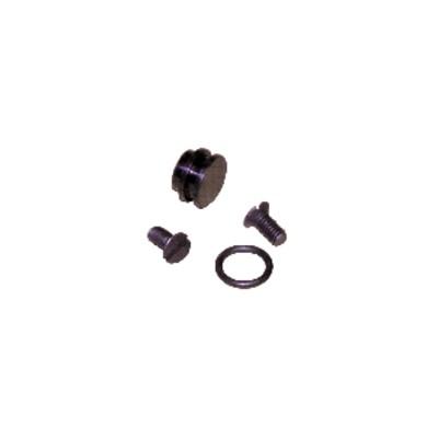Transformation pompe AU en AE (991401) - SUNTEC : 991401