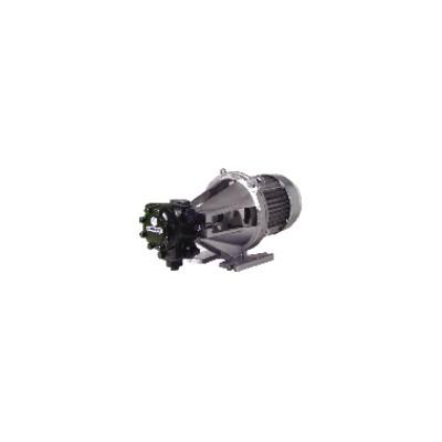 Motorpump high pressure gep j 728 3 phase 350l/h