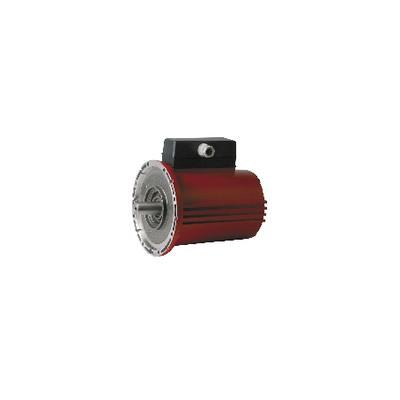 Bloc moteur RA2500-2 - SALMSON : 4005661