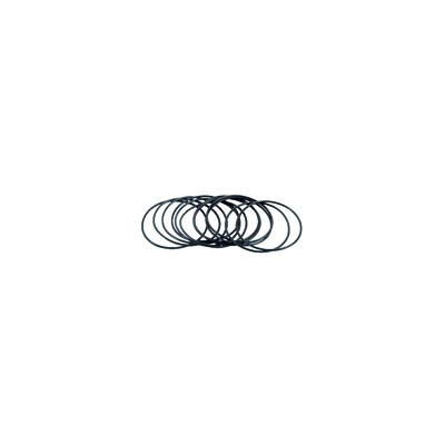 O-Ring  (X 12) - RIELLO: 3007152