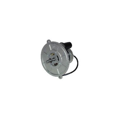 Motore bruciatore - DIFF per Oertli : 974020