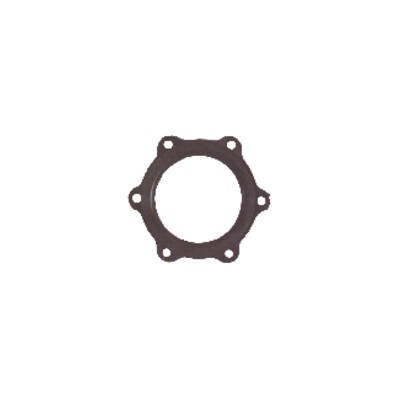 Junta p/ calentador de agua Ø110mm 6 agujeros  - ARISTON : 924002
