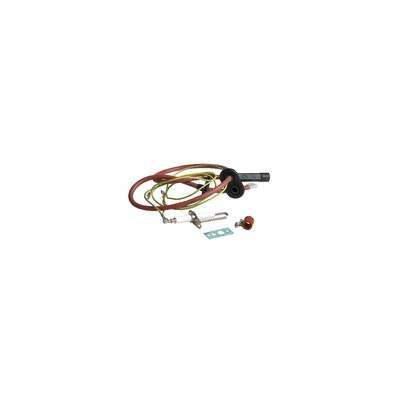 "Elettrovalvola - Tipo ODE D1000-801 FF1/4"""