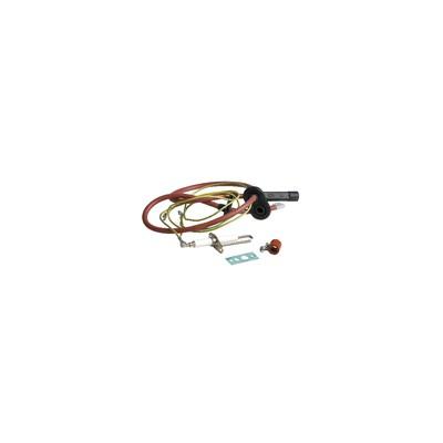 "Solenoid valve - Type ODE D1000-801 FF1/4"""