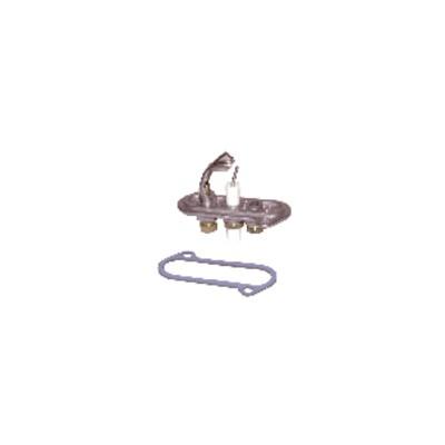 Veilleuse et injecteur JUNKERS EFEL - EFEL : 401903100