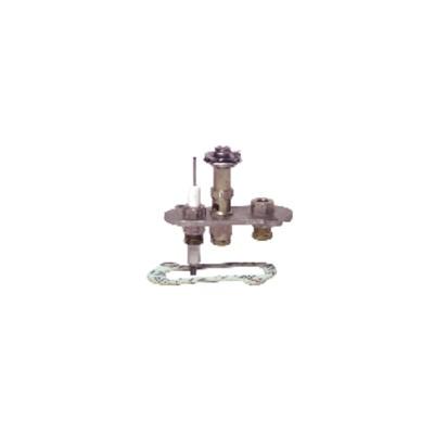 Veilleuse et injecteur SIT EFEL 0.160.002 - EFEL : 26645