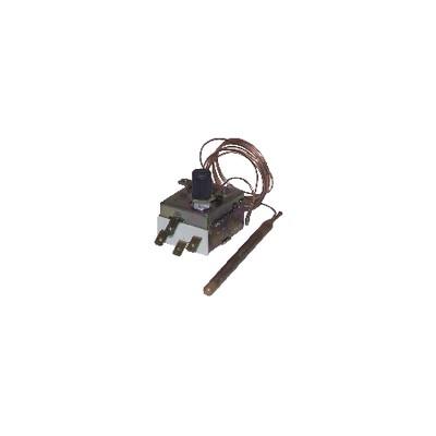 Termostato sicurezza acqua a bulbo capillare e reset manuale 90/110 LS1