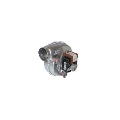 Flame sensing probe BS1 - RIELLO : 3007987