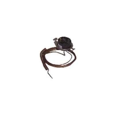 termostato R93 T4 LS8097A1065 - RENDAMAX : 64200193