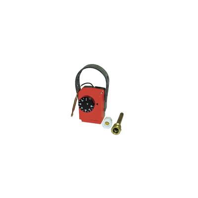 Aquastat en boîtier à applique type BFMH3001 - COTHERM : BMFH3001 JUSQU'A 100MM