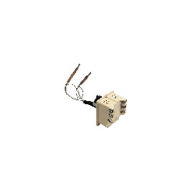 Termostato calentador de agua BTS450 2 bulbos 110° - COTHERM : KBTS900407