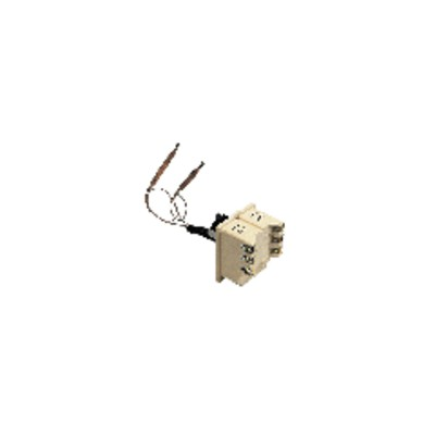 Water heater thermostat bts 450 with 2 bulbs 110° - COTHERM : KBTS900407