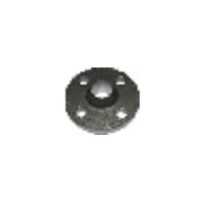 Controflangia -Dn50-Pn10/16-Acciaio - SALMSON : 82245