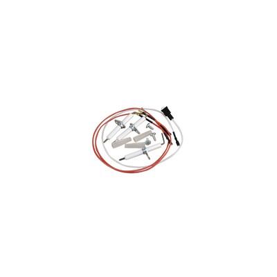 Électrode ionisation u012- 28t60 x3 - GEMINOX : 87215743240