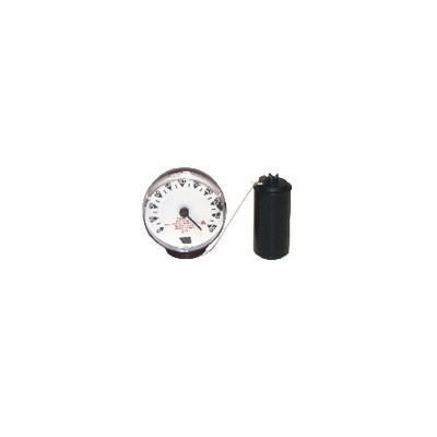 Gauge mechanical with float type m 220v  - WATTS INDUSTRIES : 22L0103102