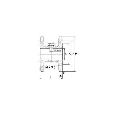 Ignition electrode TE - BAXI : SRN902779