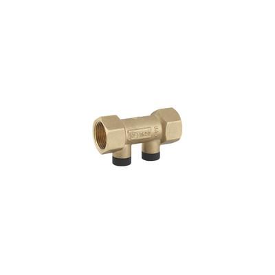 "Anti-pollution check valve NF hosta 1 1/4"" FF - GRANDSIRE : 21083"