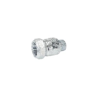 Accesorios de bombas DELTA - Filtro bomba Delta 12 mm - DELTA : DERD DIAM 7