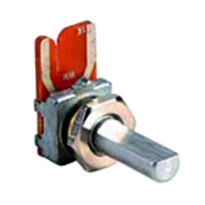 Ionisationssonde BS2/BS3 - RIELLO : 3007988