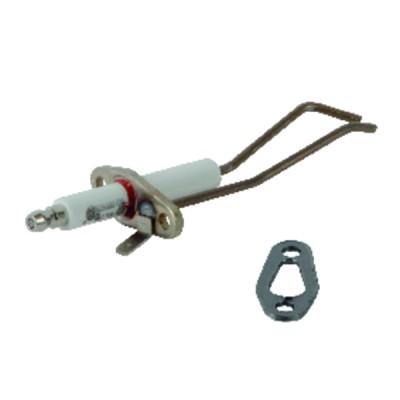 SUNTEC Pumpe - SUNTEC : AN47C72283P