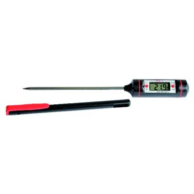 Thermomètre électronique à pointe inox