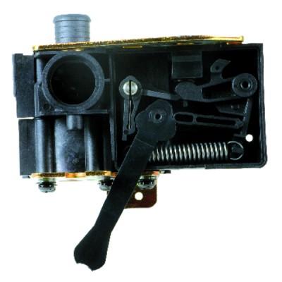 Sonde CTN - DIFF pour Chappée : SX8435400